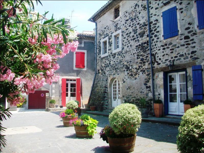 Quel est ce village de Basse-Ardèche, situé au sud-est du département, qui doit sa renommée à son centre médiéval et aux vestiges antiques retrouvés à ses abords ?