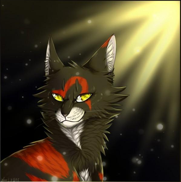 C'est à cause de Sol qu'Étoile de Jais ne croit plus au clan des Etoiles.