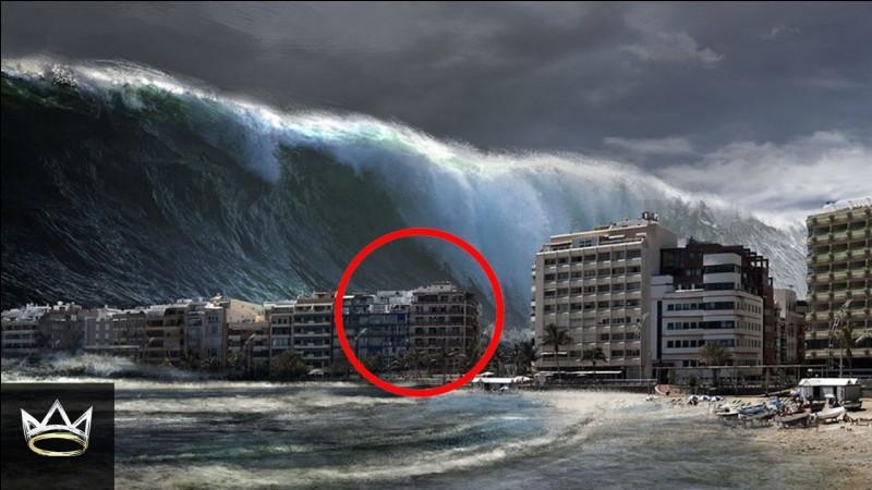 """Quel phénomène marin est appelé """"tsunami"""" au Japon ?"""