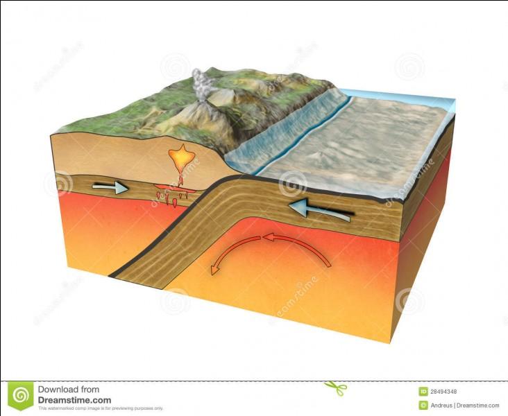 Quelle partie de la géologie peut notamment étudier la déformation des terrains par le mouvement des plaques ?
