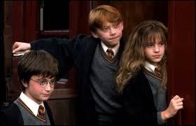 Suite à quel événement Harry et Ron deviennent-ils amis avec Hermione ?