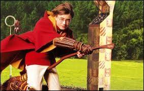 Que doit faire Harry pendant le match de quidditch ?