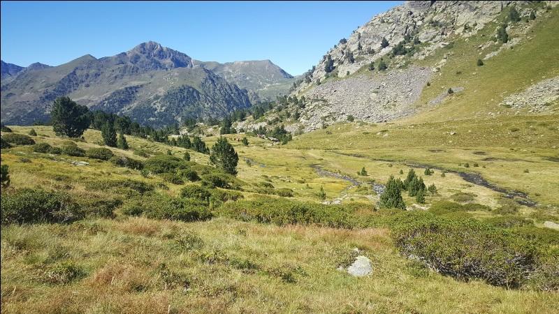 Andorre-la-Vieille - Quand a lieu la Festa Major ?