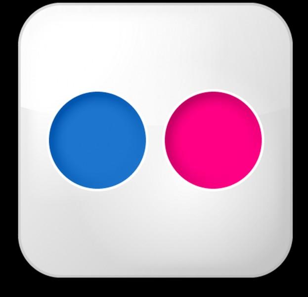 À quel réseau social permettant de partager des images ce logo appartient-il ?