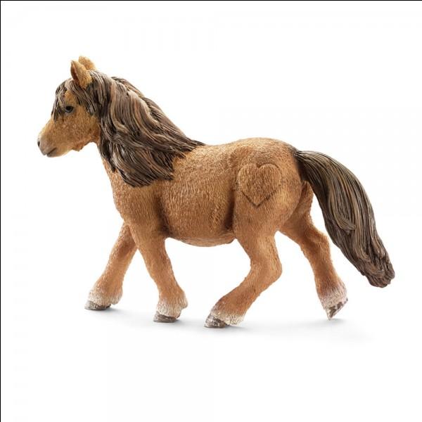 De quelle race est ce cheval Schleich ?