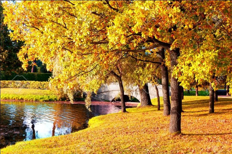 Quel mois d'automne est le titre d'une chanson de Francis Cabrel ?