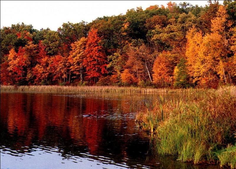 La date de l'équinoxe d'automne tombe toujours le 21 septembre :