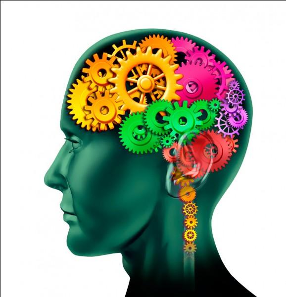 Le cerveau a des capacités tellement étonnantes qu'aujourd'hui ....