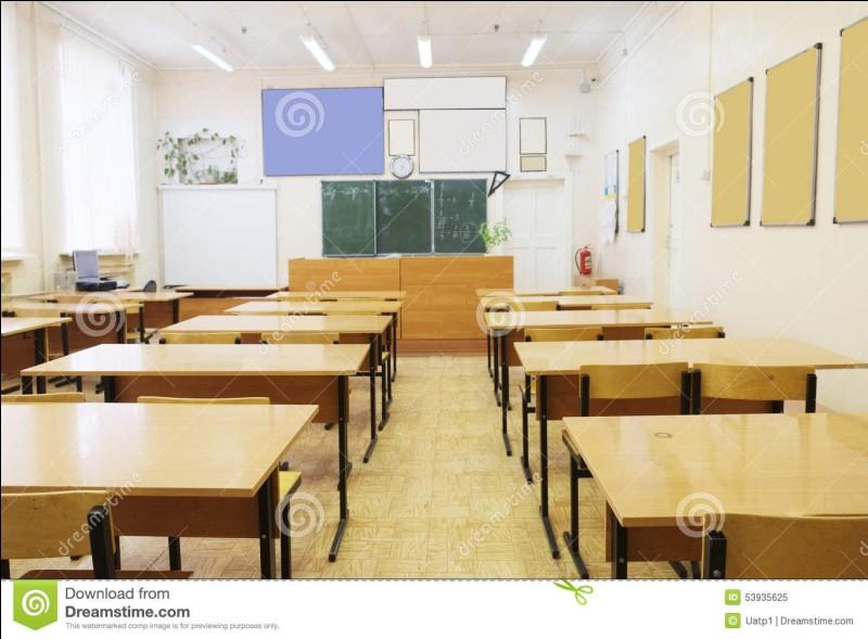 Quelle est ou était votre matière préférée à l'école ?