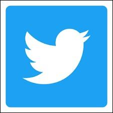 """Le réseau social """"Twitter"""" a été créé en 2008."""