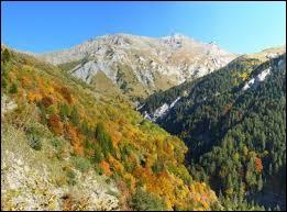 Le versant sud d'une montagne est appelé un adret.