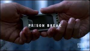 Que recherchent Michael et les autres pour ne pas retourner en prison ?