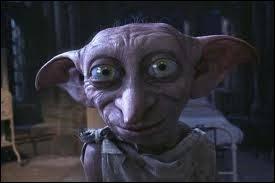 Avec quel vêtement Dobby est-il libéré ?