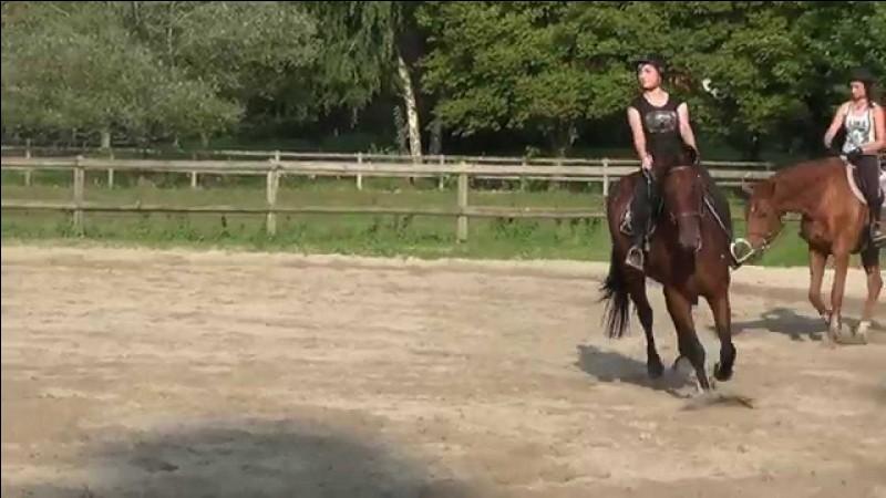 Quel est le cheval alezan, le plus clair ?