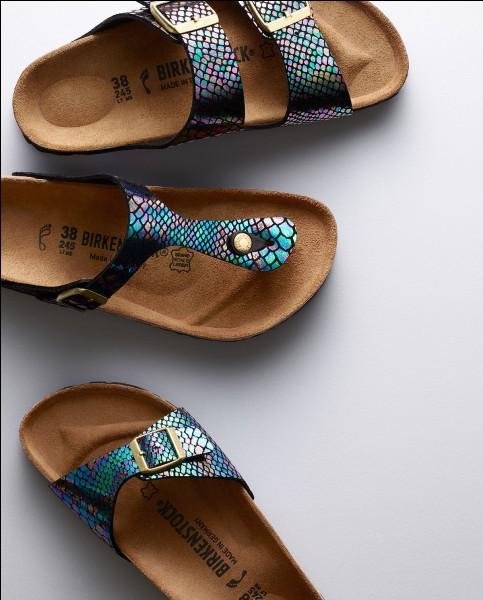 Les Birkenstock sont des chaussures :