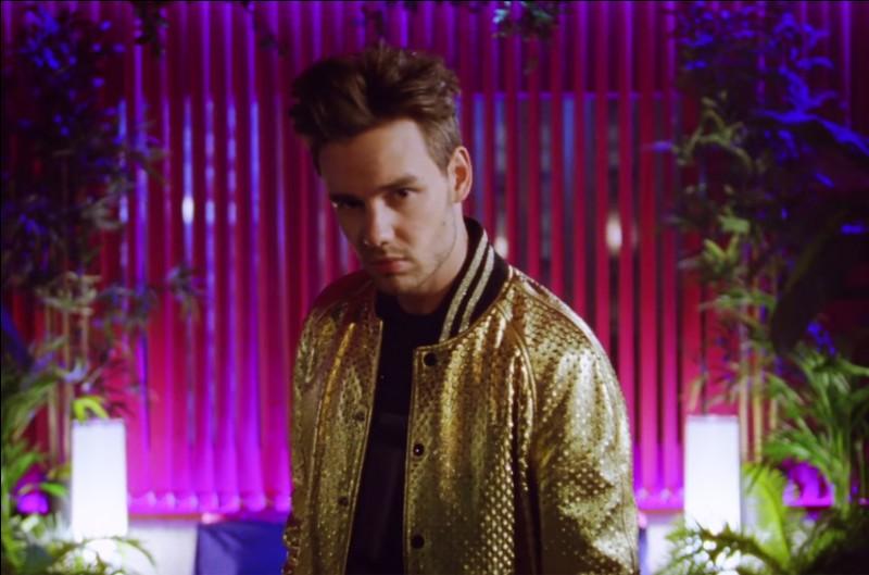 """Quel membre des One Direction a chanté """"Strip That Down"""" ?"""