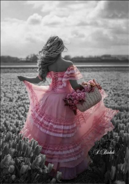 """Qui chantait """" Oui, elle m'a dit adieu, oui après tout, tant mieux, oui l'amour est un jeu"""" ?"""