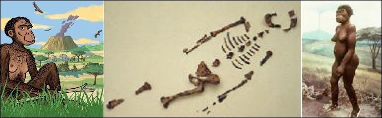 Histoire - Dans quel pays a-t-on découvert les ossements de Lucy, l'Australopithèque la plus connue ?