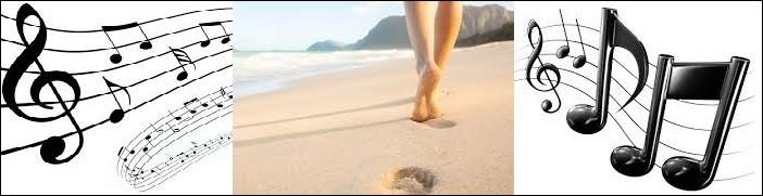 Musique - Qui aime regarder les filles qui marchent sur la plage ?