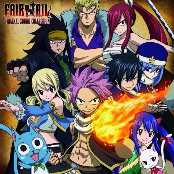 Quels sont les membres de l'équipe la plus puissante de Fairy Tail ?