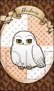 Où Harry a-t-il trouvé le prénom de Hedwige ?
