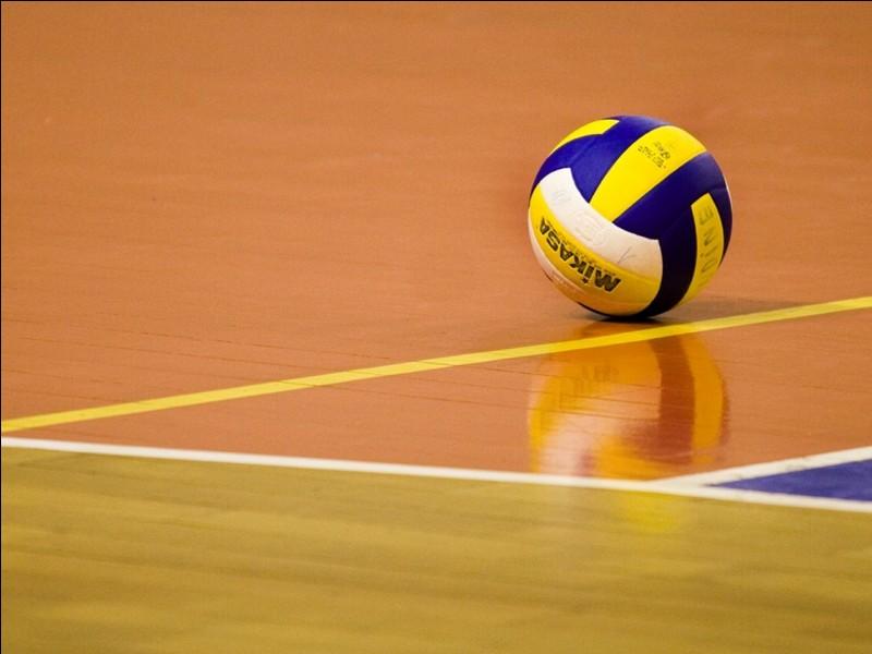 Un pays déjà champion du monde cette année dans un sport de plage a également remporté la médaille d'or européenne en volley-ball masculin, le 29 septembre. Quel est ce pays ?