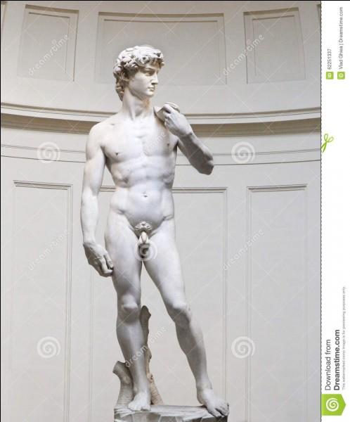Je suis un peintre et un sculpteur, né le 6 mars 1475 et mort le 18 février 1564, à Rome. Je suis Italien. J'ai sculpté le David, et j'ai peint le Jugement Dernier. Qui suis-je ?