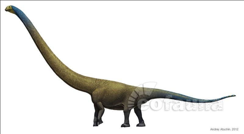 De combien de vertèbres cervicales est constitué le cou de Mamenchisaurus ?