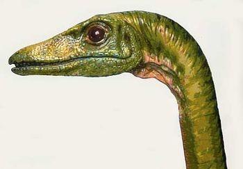 La biologie des dinosaures