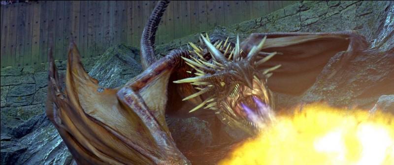 Les quatre Champions s'embarquent donc lors de la Première Tâche à la recherche du fameux Œuf d'Or. Ils doivent absolument le récupérer pour continuer l'aventure. Harry Potter hérite du Magyar à Pointes. Mais quel Dragon Cédric Diggory doit-il affronter ?