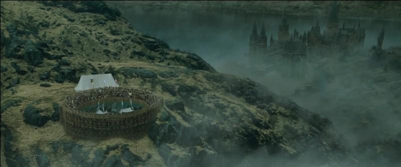 Harry Potter hérite du Dragon le plus dangereux lors de cette Première Tâche. Si les trois autres Champions vont utiliser des sortilèges magiques pour vaincre leur dragon respectif, comment Harry Potter va-t-il se débrouiller ?