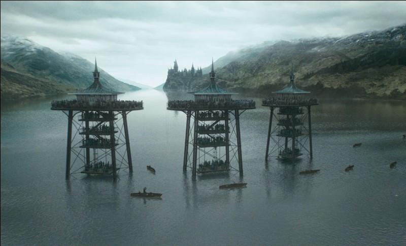 La Deuxième Tâche du Tournoi des Trois Sorciers peut donc enfin commencer. Elle se déroule dans le Lac Noir où chaque Champion doit aller récupérer un de ses amis. Quelle tactique pour respirer sous l'eau ne se matérialise pas véritablement ?