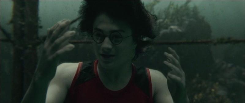 Au cours de la Deuxième Tâche, la Championne de Beauxbâtons, Fleur Delacour, est contrainte à l'abandon. C'est Harry Potter qui délivrera sa sœur, Gabrielle Delacour, prisonnière des eaux. Pour quelle raison Fleur Delacour n'a pas pu continuer la deuxième épreuve ?