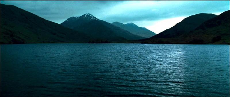 Suite à la fin de la Deuxième Tâche, et après que tous les sorciers prisonniers des eaux aient été récupérés, un classement doit être communiqué. Quel est le nombre de points obtenu par le vainqueur de l'épreuve Cédric Diggory ?