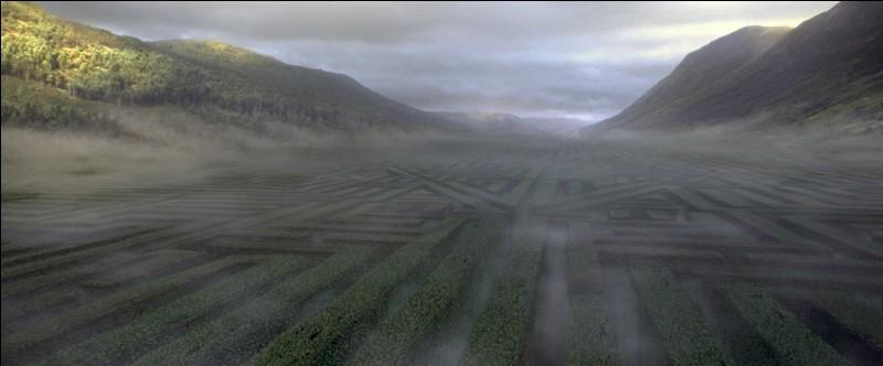 """Quelques temps plus tard, la Troisième Tâche et aussi dernière épreuve, se déroule à Poudlard. Elle prend place dans un immense labyrinthe géant. Dans le film """"Harry Potter et la Coupe de Feu"""", qui est censé donné le départ par un coup de canon ?"""