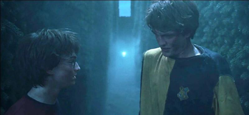 Alors que la Troisième Tâche se poursuit, les événements s'enchaînent rapidement au point que seuls Harry Potter et Cédric Diggory restent en course. Bartemius Croupton Jr. a mis les autres Champions hors de la compétition. Quels sortilèges magiques a-t-il utilisé ?