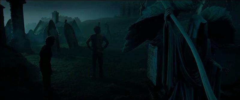 Harry Potter et Cédric Diggory approchent du but lorsqu'ils aperçoivent le Trophée du Tournoi des Trois Sorciers. Les deux sorciers choisissent de prendre le Trophée en même temps et sont aspirés car il s'agit d'un Portoloin. Où se retrouvent-ils transportés soudainement ?