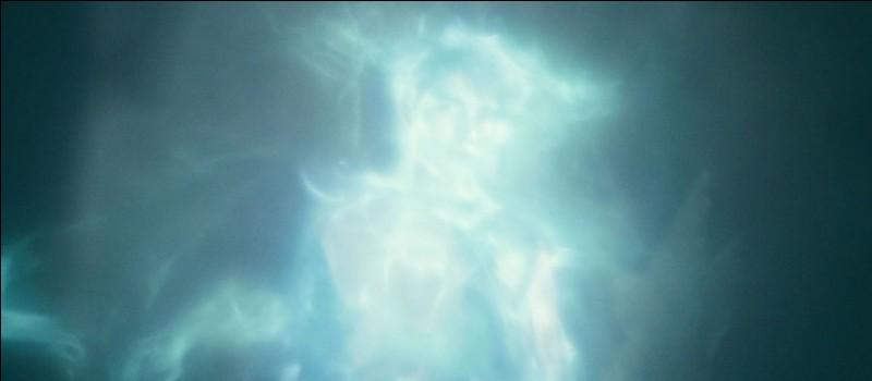 Juste après, un combat magique singulier s'engage entre le Seigneur des Ténèbres et Harry Potter. Leurs baguettes magiques étant jumelles, un Priori Incantatem se forme. Dans le film et PAS dans le livre, combien de personnes, victimes de Lord Voldemort, apparaissent à Harry Potter ?