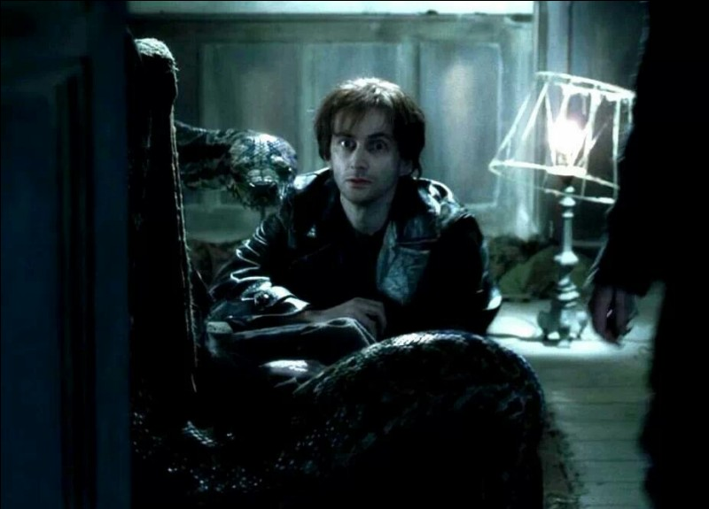 """Pendant ce temps, Lord Voldemort, en retrait depuis sa défaite dans """"Harry Potter à l'école des sorciers"""", élabore un plan. En effet, il apprend que le Tournoi des Trois Sorciers va se tenir à Poudlard. Comment apprend-il cette nouvelle ?"""