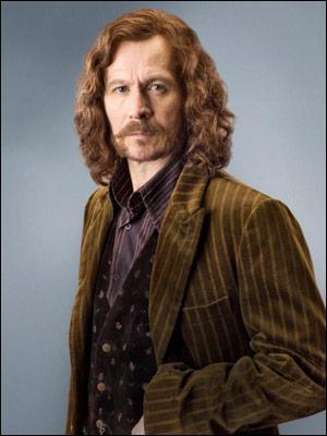 Selon Harry, où doit se trouver Sirius dans la salle des prophéties ?