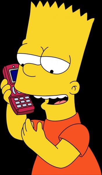 Quelle est la couleur des murs de la chambre de Bart ?