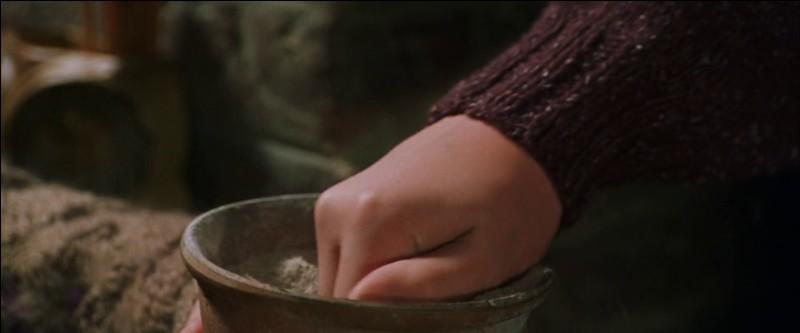 Que prend Harry dans sa main ? (Sert à voyager)
