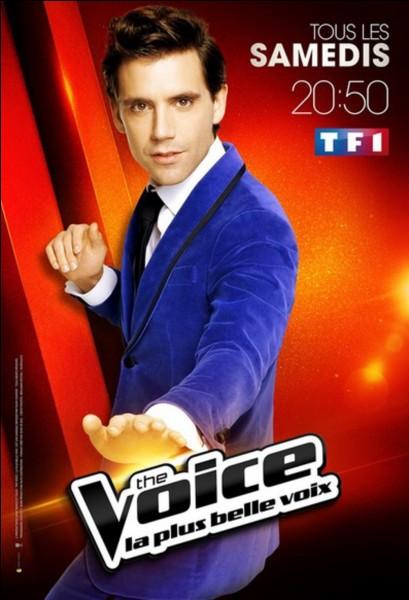 """Mika a-t-il remporté une fois """"The Voice"""" ?"""