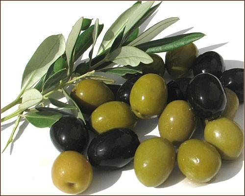 Les olives vertes et noires ne sont pas une même variété.