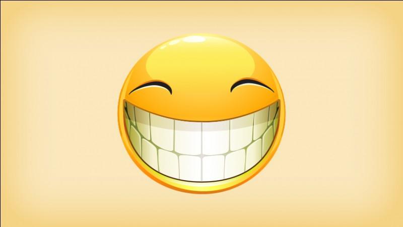 Quel genre d'humour vous correspond le plus ?
