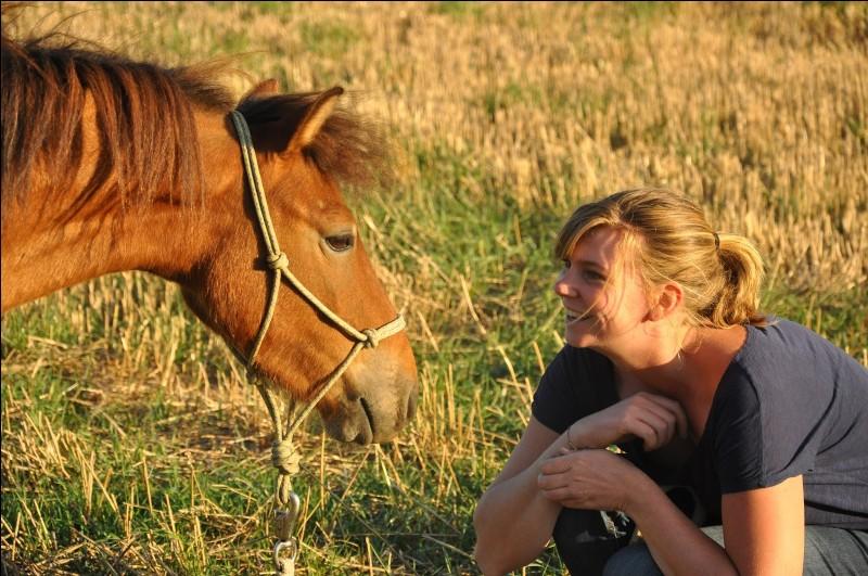 Quelle est l'humeur du poney ?