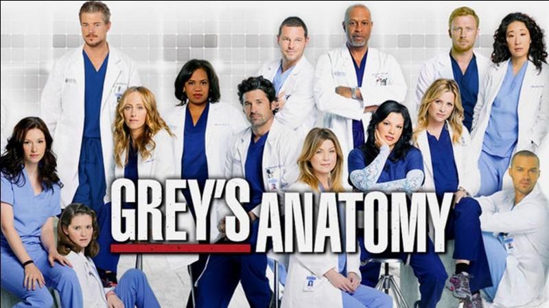 Combien y a-t-il de saisons de Grey's Anatomy ?