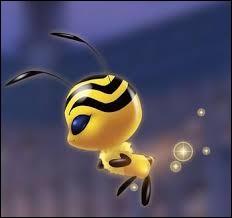 C'est... qui reçoit sûrement le Miraculous de l'abeille !