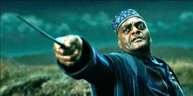 """Qui est ce personnage de """"Harry Potter"""" ?"""