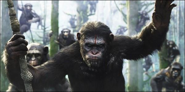 """Dans """"la Planète des Singes"""" quel singe vivait autrefois dans un cirque ?"""